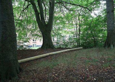 balance i skoven